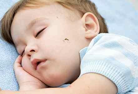 голосование завершено ребенок скрипит зубами ночью причина того чтобы узнать
