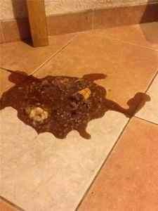 Рвота у ребёнка коричневого цвета